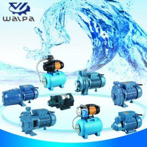 pompa ad acqua centrifuga di flusso enorme 3HP CS300