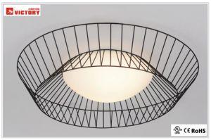 屋内照明の現代元のガラスLEDの天井灯