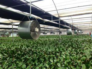 Il fiore della serra coltiva il ventilatore assiale di scorrimento dell'aria assiale circolare del ventilatore