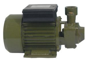 Pumpe des Wasser-Qb60