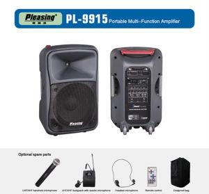 전력 증폭기 무선 Loundspeaker PA 스피커 PL 9915