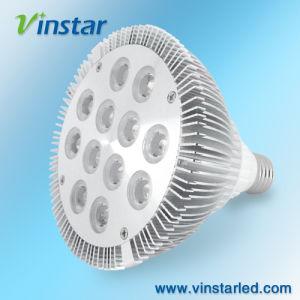 Luzes de foco LED 12 W (VS1201 corresponde)