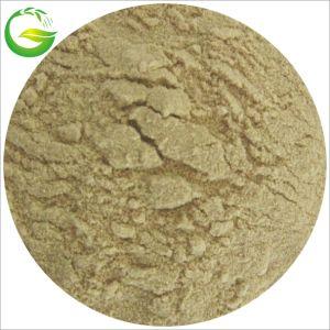 45%-80% de organische Meststof van het Poeder van het Aminozuur