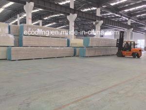 Qualitäts-Polyurethan Isolierdach-/Wall-Panel für Kaltlagerung