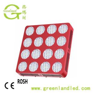Comercio al por mayor de aleación de aluminio de alta potencia de 1600W de luz LED de crecer para la casa verde
