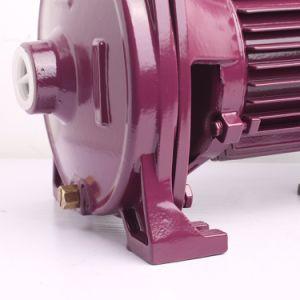 Zheli 1.0HP zentrifugale Wasser-Pumpe mit thermischem Schoner (CPM158)