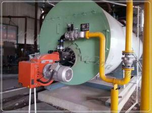 Olio intelligente di comando digitale/Caldaia a vapore a gas (WNS)