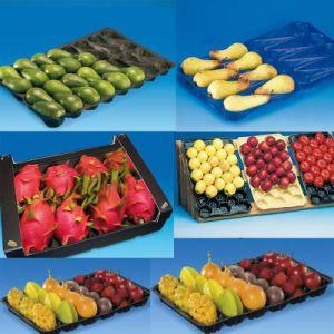 Рр ПЭТ материала типа лотка фрукты и овощи упаковочных материалов