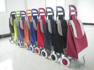 Faltender Einkaufen-Laufkatze-Beutel (XY-403)