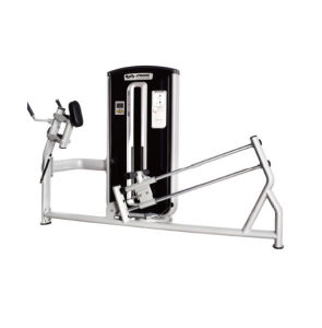 Maquina Pantorrilla Vertical Bd-017