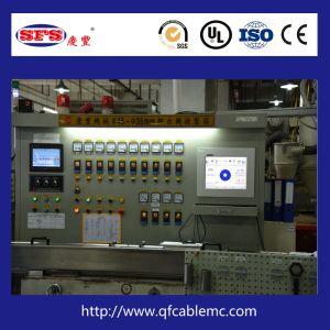 Linea di produzione di alta precisione dell'espulsione del Teflon di Fluoroplastic (ETPE/PTFE/FEP/FPA)