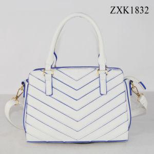 형식 숙녀 핸드백 (ZXK1832)를 밀초를 바르는 Ss18 대조