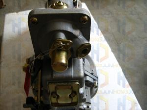 Dcec 6CTエンジンのための燃料の注入ポンプ(4938265)