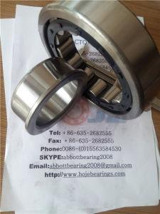 Roulement à rouleaux cylindriques Nj314 avec le plus bas prix