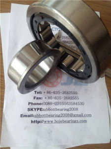 Zylinderförmiges Roller Bearing Nj314 mit Lowest Price