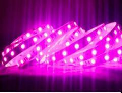 5050 indicatore luminoso di striscia dentellare di colore di 60LEDs/M 660nm LED