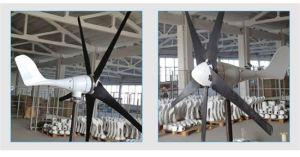 Generatore di vento professionale di programma di fuori-Griglia