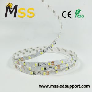 2835 strisce Bendable di figura LED di 60LEDs/M S