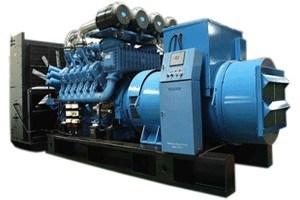 1000kw Mtu 침묵하는 발전기 1250kVA 주요한 힘 Stamford 또는 시멘스 또는 마라톤 또는 Engga 발전기