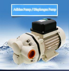 Pompa di trasferimento dell'acqua per la spruzzatura del giardino di agricoltura
