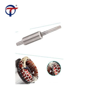 4 van het Roestvrij staal duim Reeks van de Met duikvermogen van de Pompen 4SD