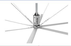 24 ФТ Hvls BLDC Промышленные вентиляторы на потолке