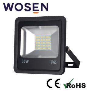 Ce/AEA/Bis/EMC/Saso à prova aprovada Holofote LED IP65
