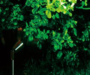 Spitzen-Licht des China-Fabrik-Edelstahl-1W IP68 LED für Garten