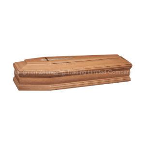 Novo Modelo caixão e cofre com vidro