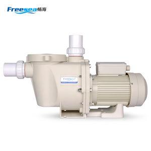 Pool-Pumpen-Behandlung-Gerät des Abwasser-2HP