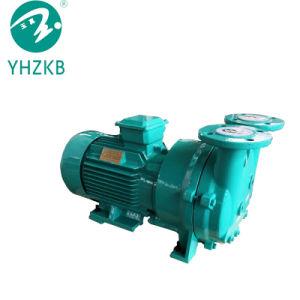 7.5 Kilowatt-Wasser-Ring-Vakuumpumpe für Autoklav/Sterilisator