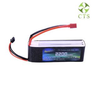 Larga vida 11,1V 12V 600mAh 22Ah batería de litio recargable de polímero de litio Pack