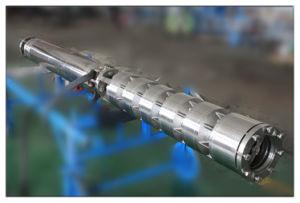 잠수할 수 있는 바닷물 펌프 제조자