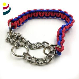 Tejido clásico trenzado de cuerdas de nylon de alta tenacidad de la correa del perro