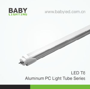 Specificatie van T8 LEIDENE Bt81A Seires Lichte Buizen