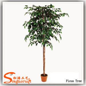 Plantas de Ficus artificial de alta qualidade para decoração de árvore (TH-21)