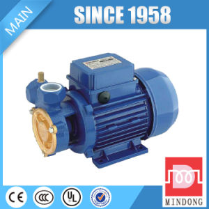 Messingpumpe des antreiber-dB125 der Serien-0.5HP/0.37kw für Verkauf