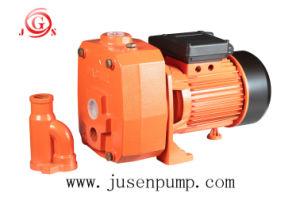 販売のための電気ディーゼル燃料の水ポンプ