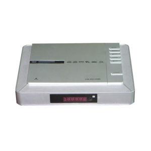 휴대용 DVD 플레이어 (PDVD-301)
