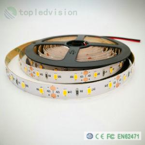 Alto brillo LED SMD2835 60/M de tira de LEDs de 12W/M con IEC/EN62471
