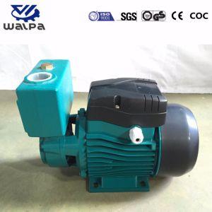 Selbstsaugpumpe mit Messingselbstansaugender Wasser-Pumpe des antreiber-Modell-TPS80 1HP
