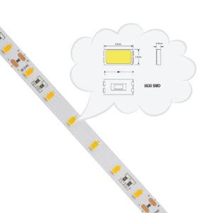 5630 CC de 72 LEDs/M12/24V 50-55 lm/luz de la Cinta de LED LED