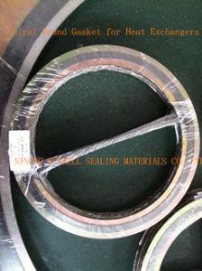 De spiraalvormige Pakking van de Wond voor Warmtewisselaars