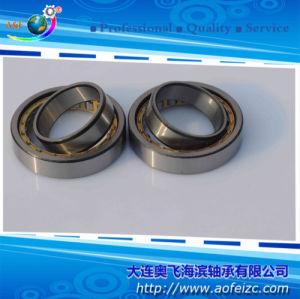 A&F Fabricante de rolamento de rolete cilíndrico (NU1009M)
