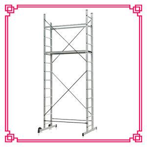 Support Bar (DLSL101B)の足場Ladder