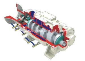 Lgb Serie Variable Pitch Schraube Trockenvakuumpumpe (LGB-30DV)
