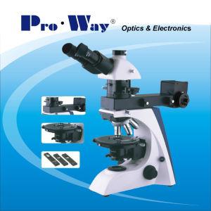Microscope de polarisation avec Transmition professionnel et reflète l'éclairage (PW-BK5000PR)