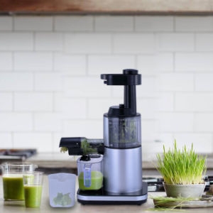Liquidificador Lento espremedor de citrinos eléctricos para uso doméstico para o Robot de cozinha aparelho