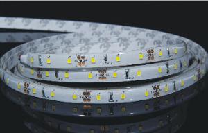 striscia flessibile di 60PCS 3014 LED con l'espulsione Silicione