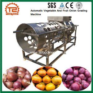 Caixa de vegetais e frutos de classificação de cebola da máquina para venda
